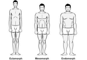 3 body types mesomorph, ectomorph, endomorph